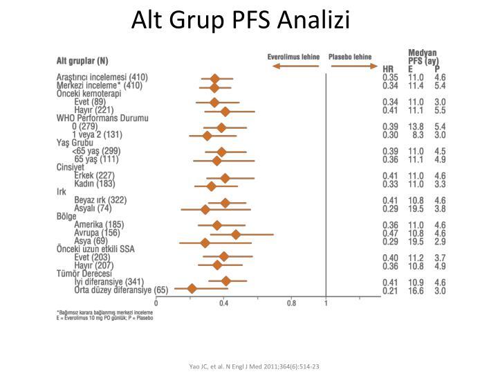 Alt Grup PFS Analizi