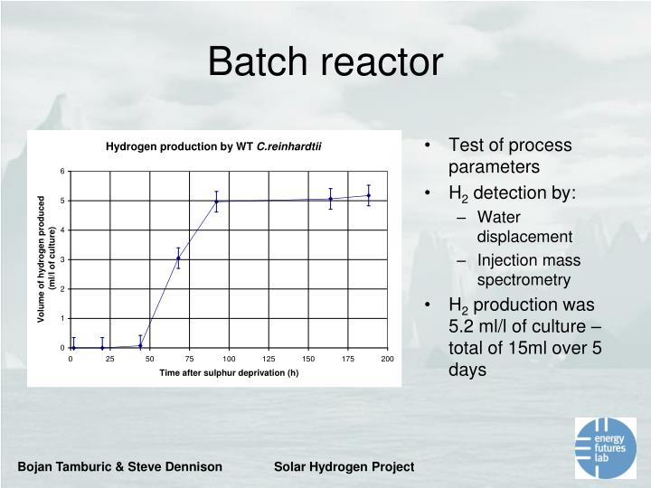 Batch reactor