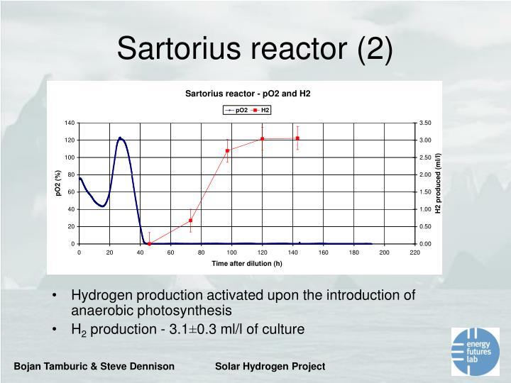 Sartorius reactor (2)