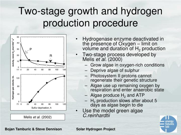 Two-stage growth and hydrogen production procedure