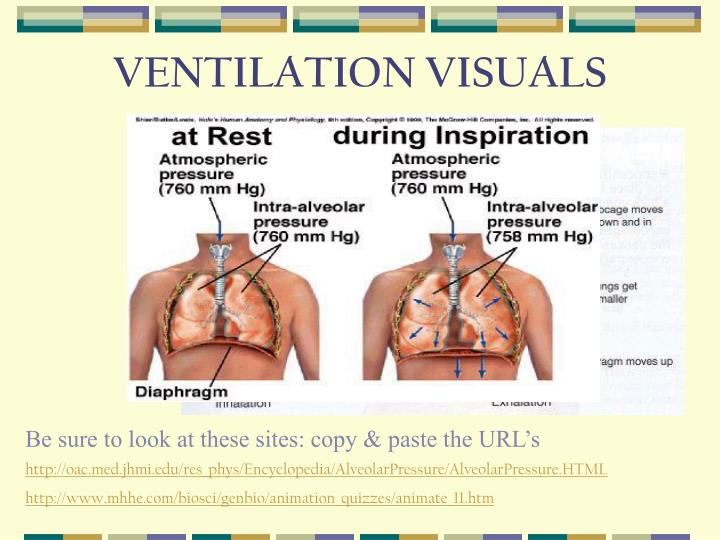 Ventilation visuals