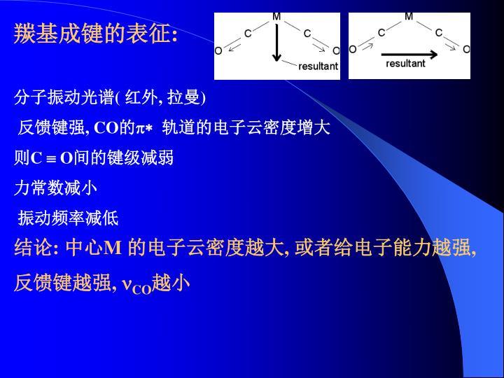 羰基成键的表征