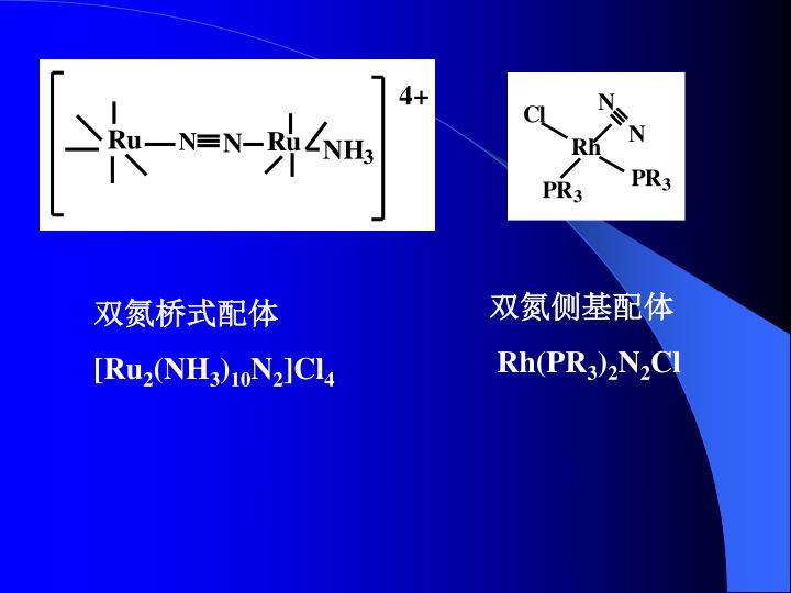 双氮侧基配体