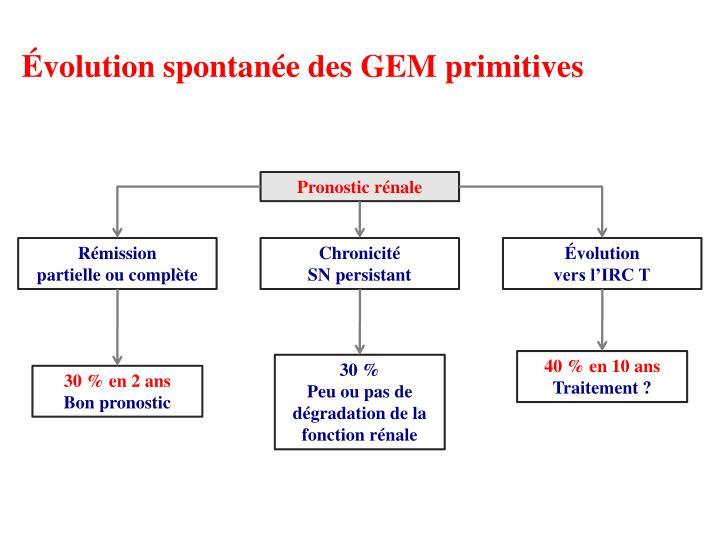 Évolution spontanée des GEM primitives