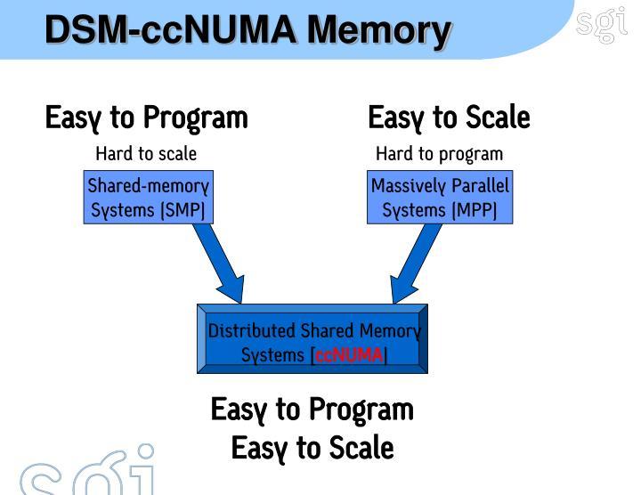 DSM-ccNUMA Memory