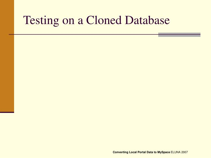 Testing on a Cloned Database