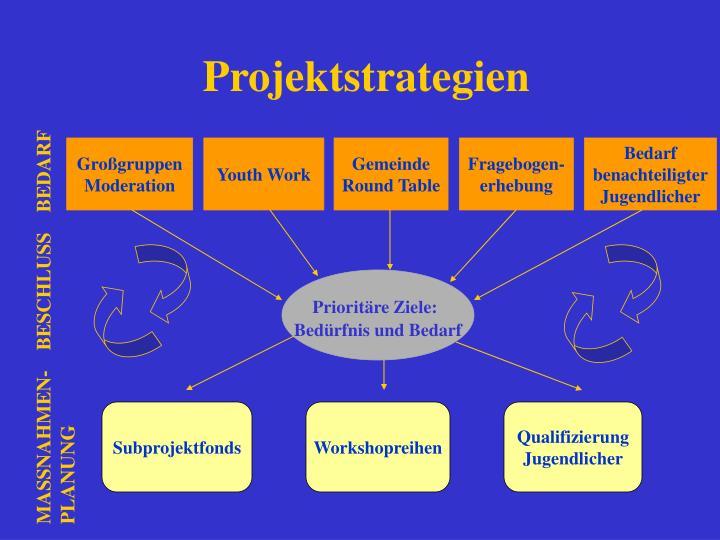 Projektstrategien