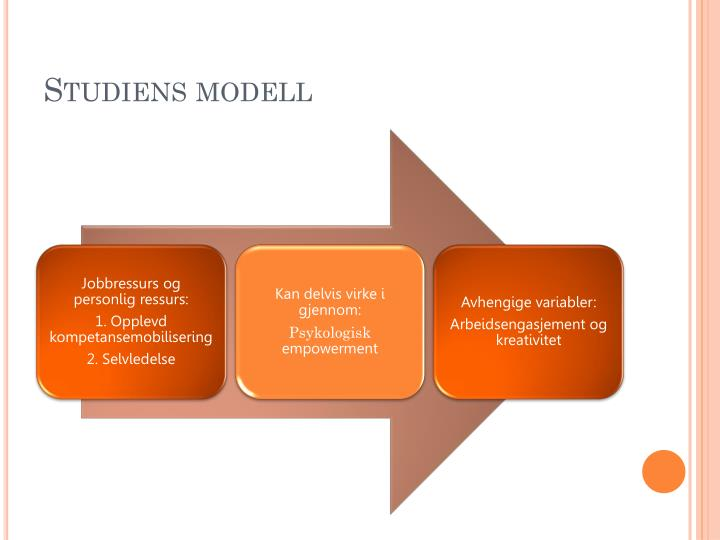 Studiens modell