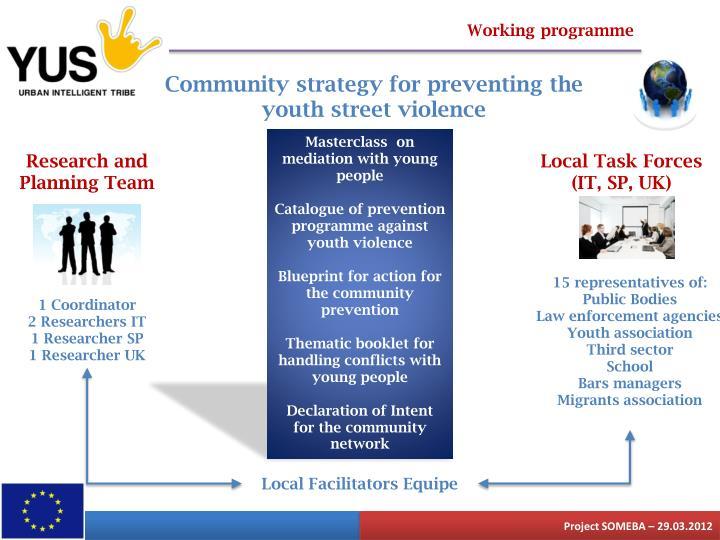 Working programme