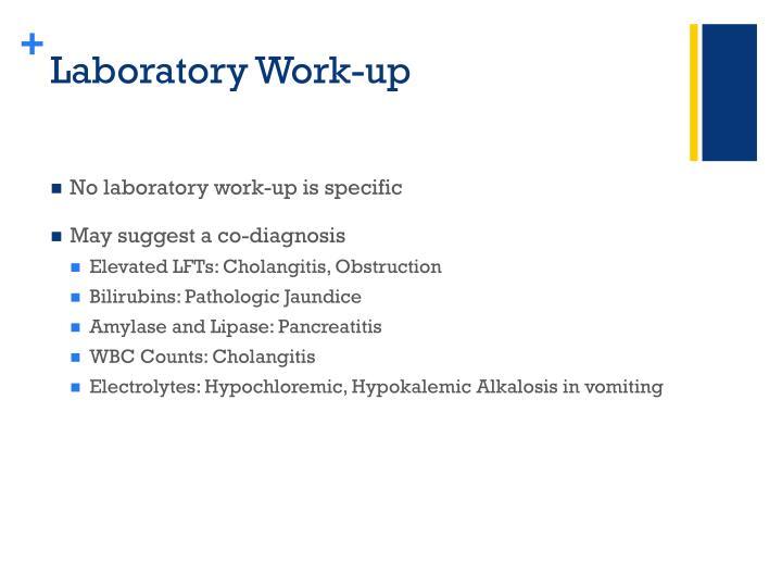 Laboratory Work-up