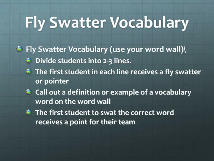 Fly Swatter Vocabulary