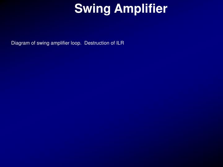 Swing Amplifier