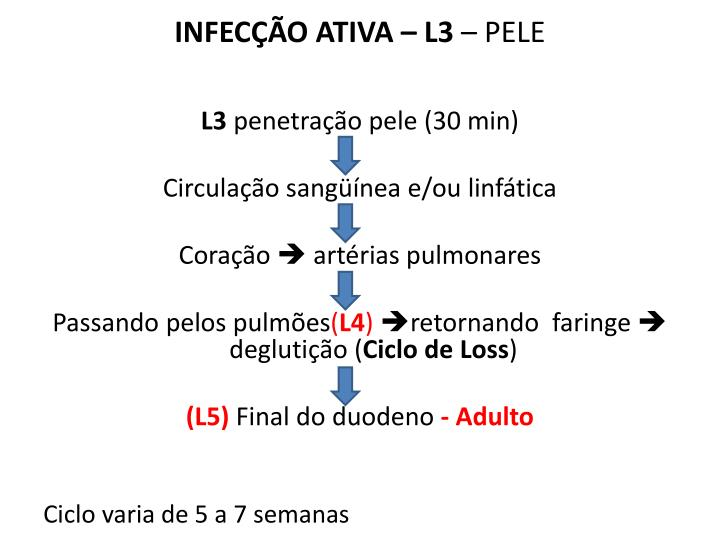 INFECÇÃO ATIVA – L3