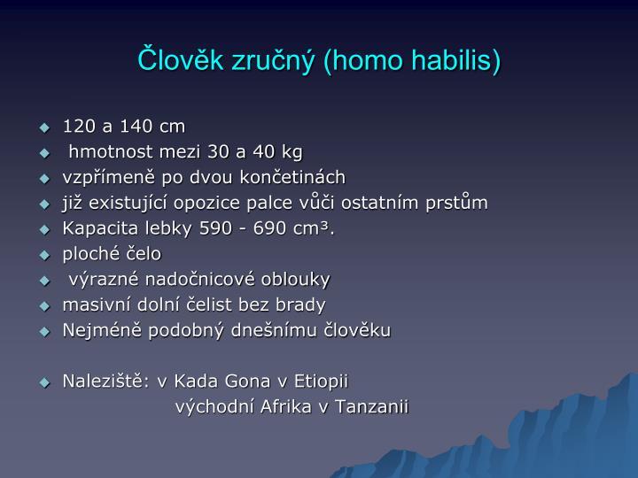 Člověk zručný (homo habilis)