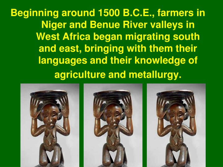 Beginning around 1500 B.C.E., farmers in Niger and Benue River valleys in West Africa began migrating south and east, bringing with them their languages and their knowledge of agriculture and metallurgy.