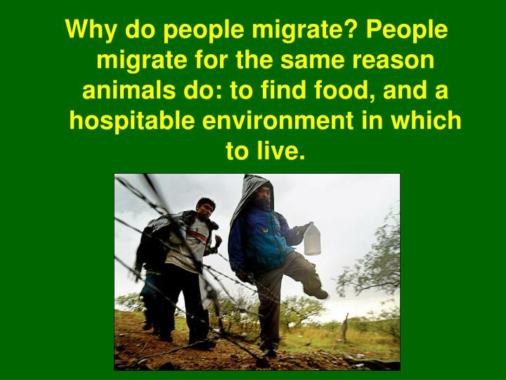 Why do people migrate? People migrate for the same reason animals do: to find food, and a hospitable environment in which to live.