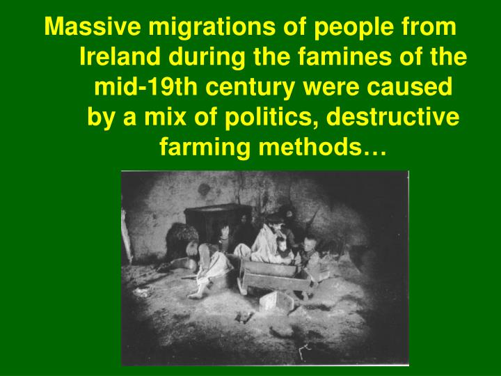 Massive migrations of people from Ireland during the famines of the mid-19th century were caused by a mix of politics, destructive farming methods…