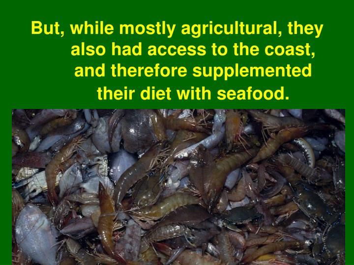 But, while mostly agricultural, they also had access to the coast, and therefore supplemented their diet with seafood.