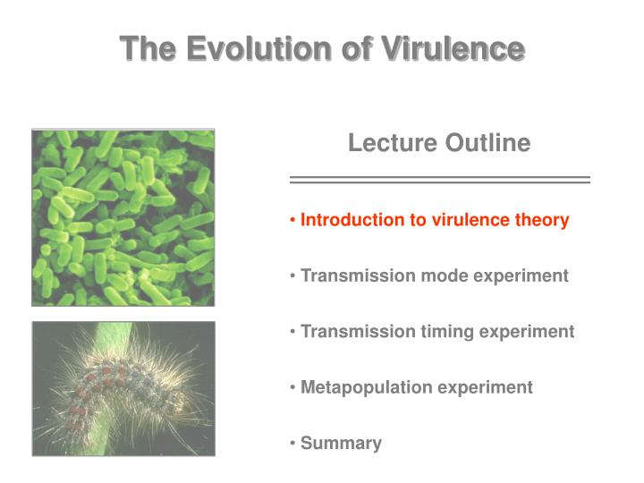 The Evolution of Virulence