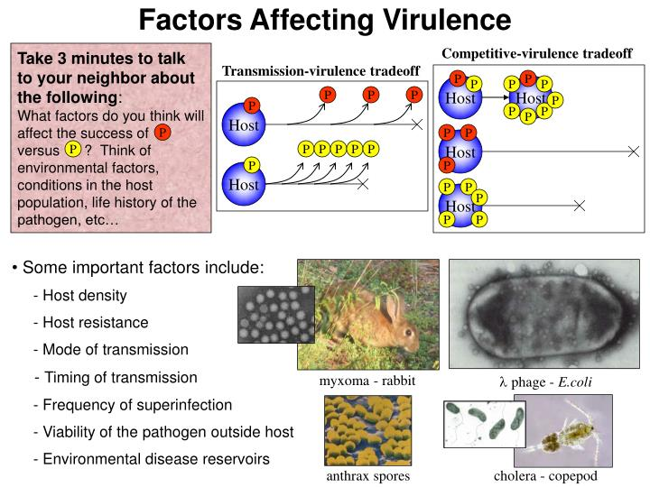 Factors Affecting Virulence