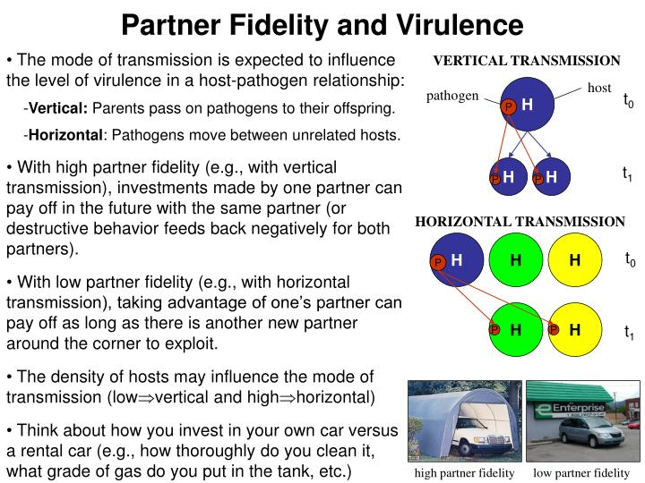 Partner Fidelity and Virulence