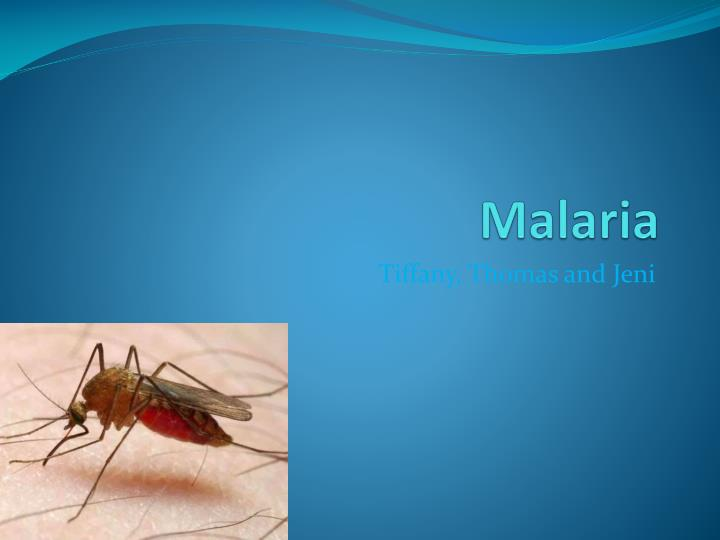 malaria thesis Malaria treatment research papers discuss the treatments used to cure the infectious disease of malaria malaria is common in third world nations and therefore, still.