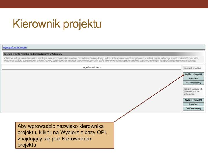 Kierownik projektu