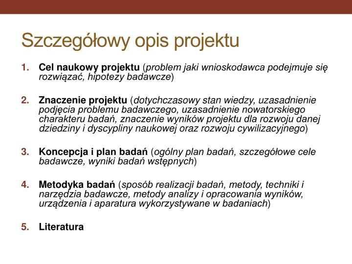 Szczegółowy opis projektu