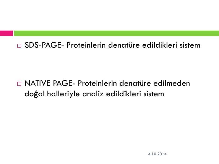 SDS-PAGE- Proteinlerin denatüre edildikleri sistem