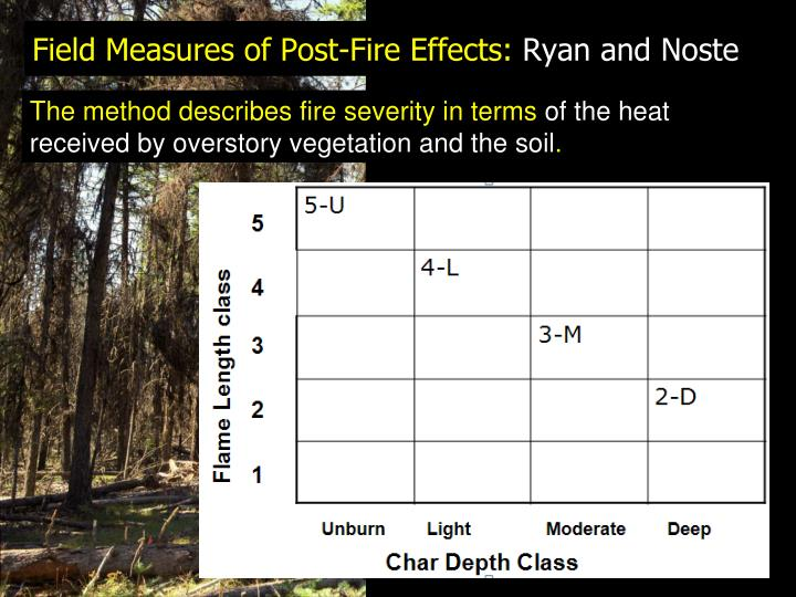 The method describes fire severity in terms