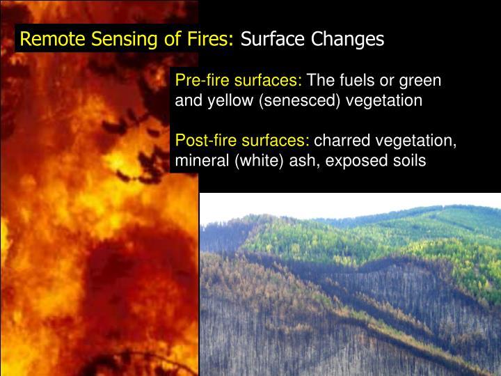 Remote Sensing of Fires: