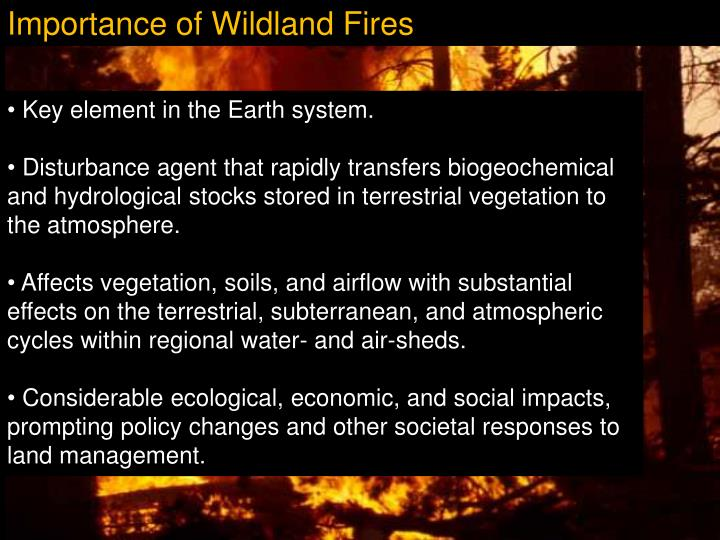 Importance of Wildland Fires