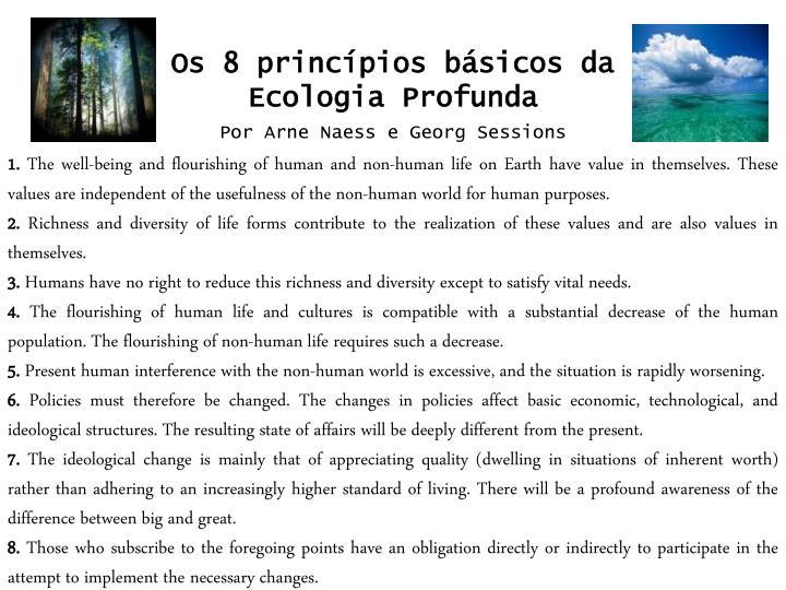 Os 8 princípios básicos da