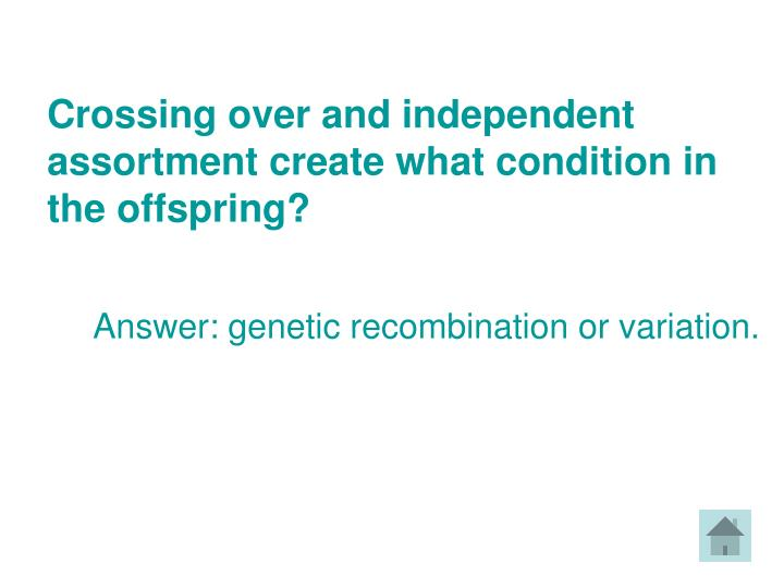 Crossing over and independent assortment create what condition in the offspring?