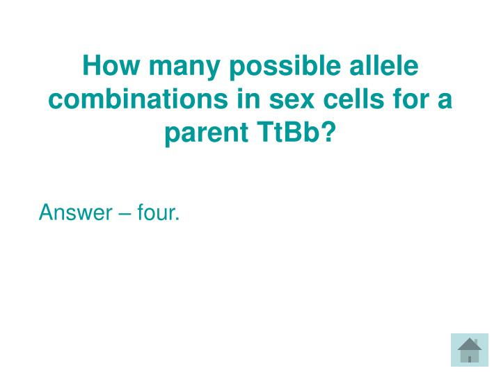 How many possible allele combinations in sex cells for a parent TtBb?