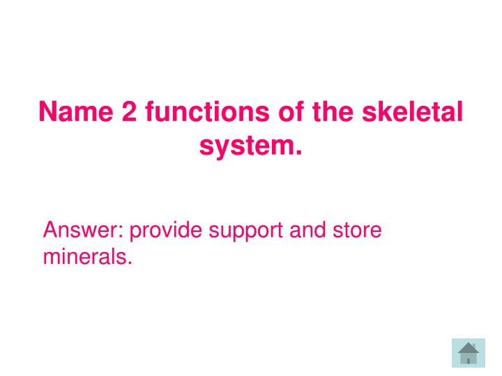 Name 2 functions of the skeletal system.