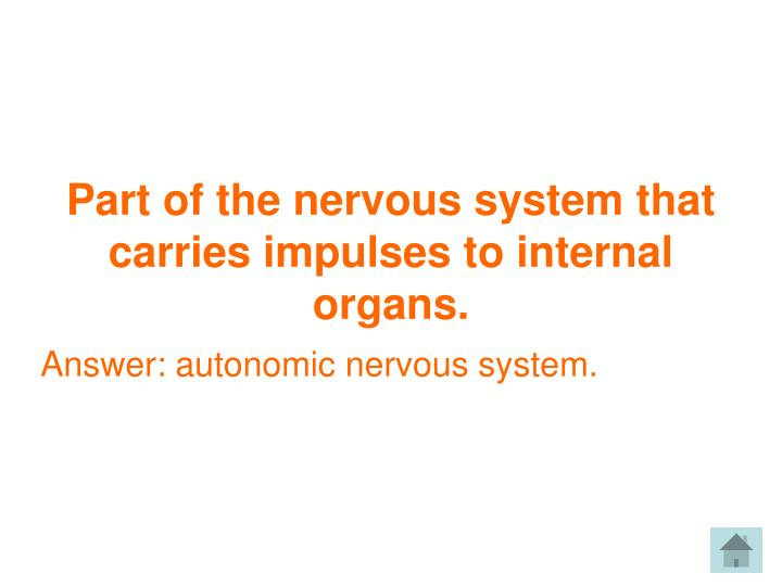 Part of the nervous system that carries impulses to internal organs.