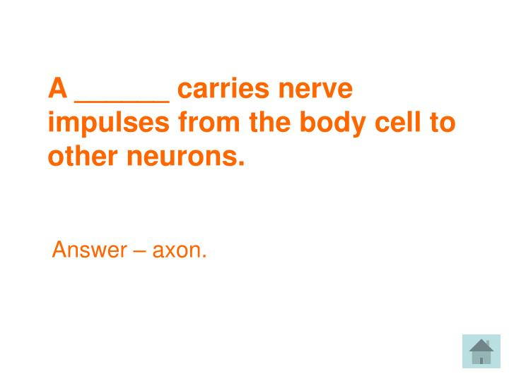 A ______ carries nerve impulses from the body cell to other neurons.