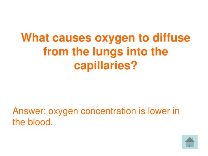 What causes oxygen to diffuse from the lungs into the capillaries?