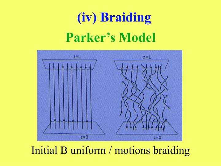 (iv) Braiding