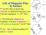 life of magnetic flux in surface