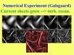 numerical experiment galsgaard