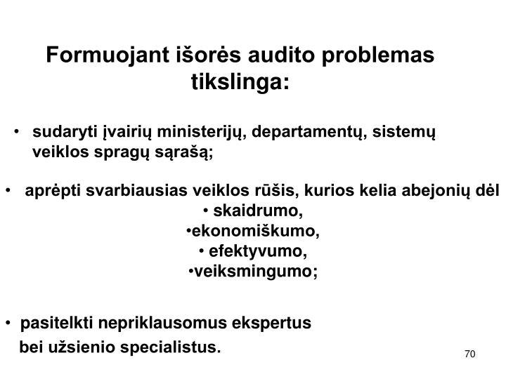 Formuojant išorės audito problemas tikslinga: