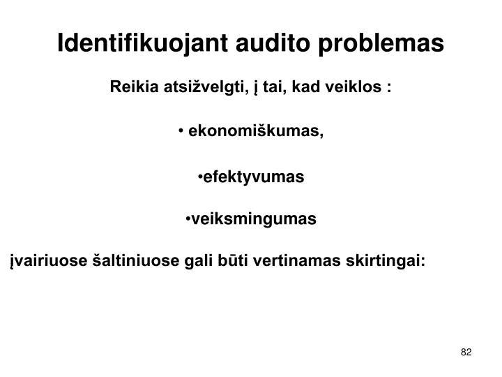 Identifikuojant audito problemas