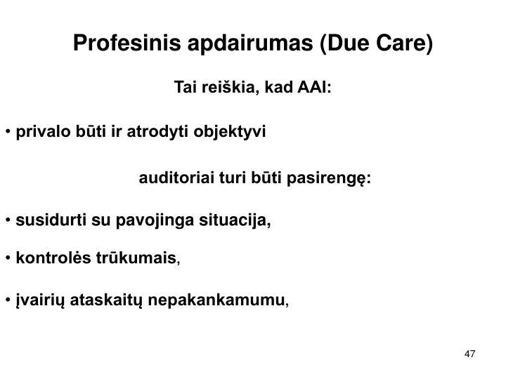 Profesinis apdairumas (Due Care)