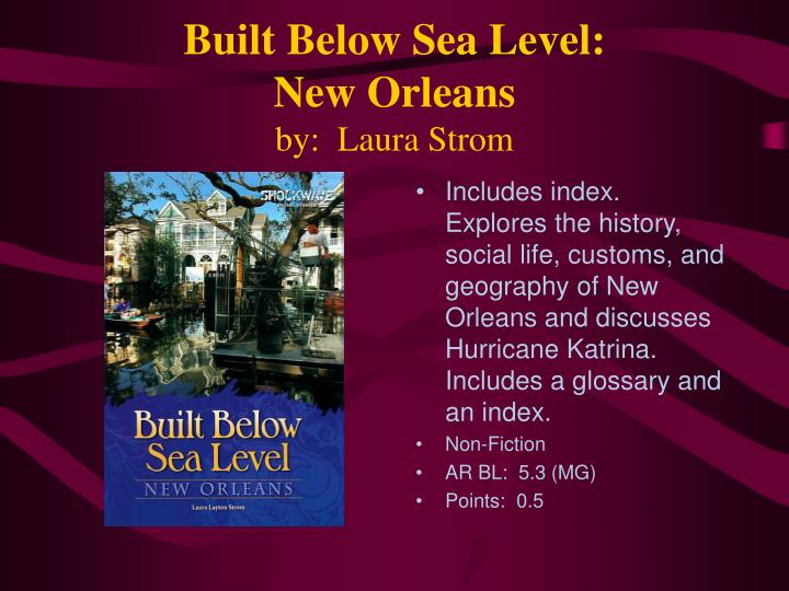 Built below sea level new orleans by laura strom