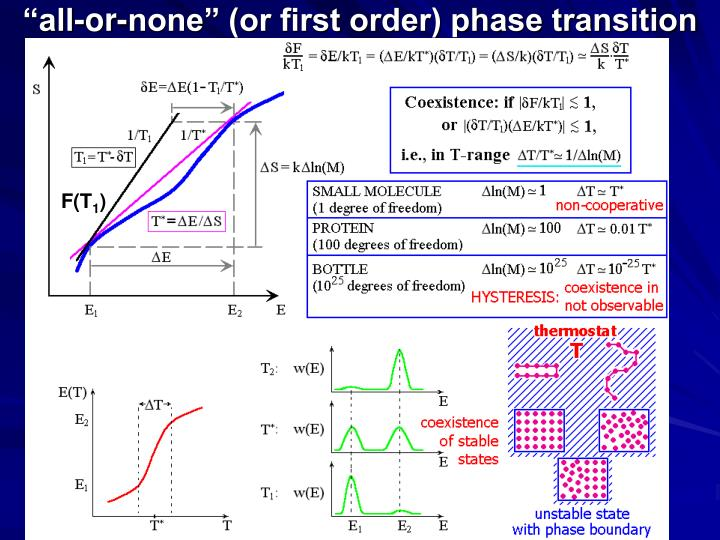 """all-or-none"" (or first order) phase transition"