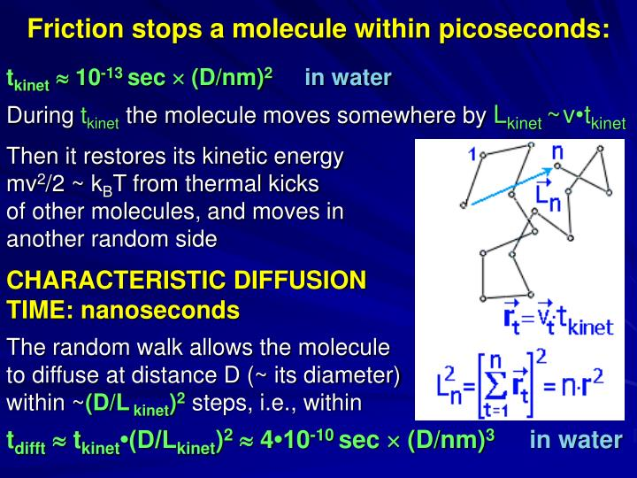 Friction stops a molecule within picoseconds: