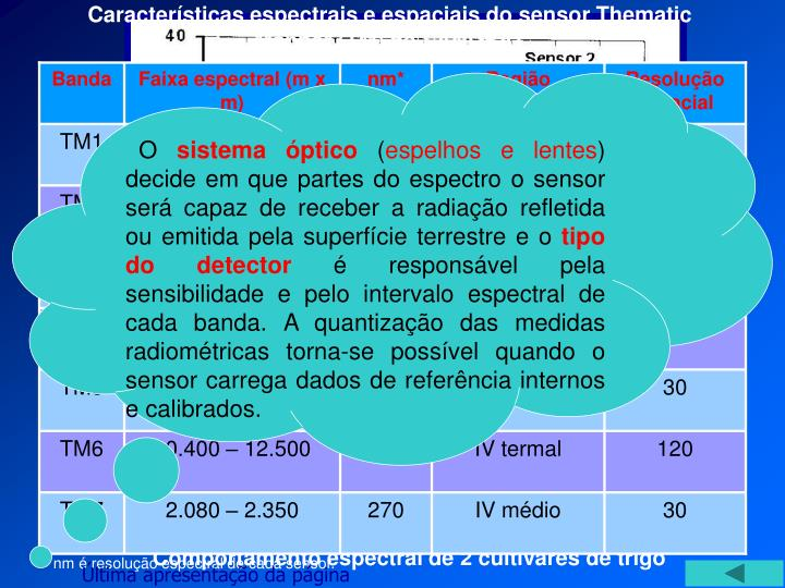 Características espectrais e espaciais do sensor Thematic Mapper (TM) do LANDSAT