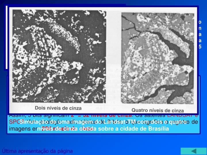 Comparação da resolução radiométrica de uma imagem com 1 bit (a esquerda) e a mesma imagem com uma resolução radiométrica de 5 bits.